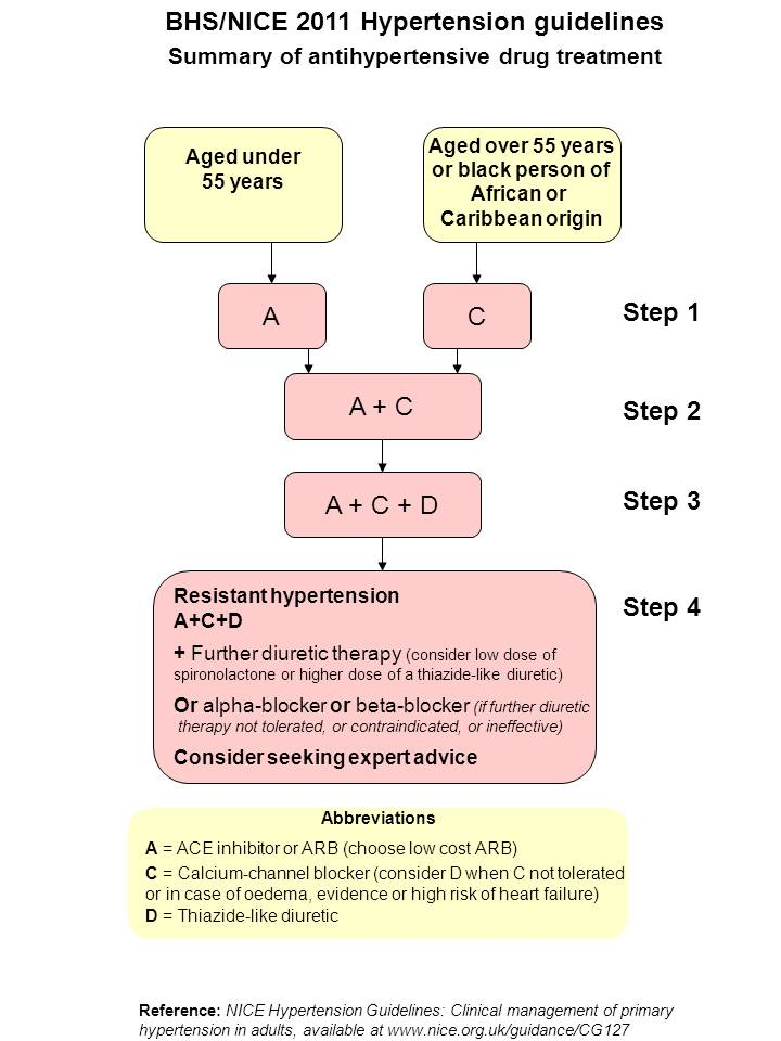The new drugs to treat hypertension essay